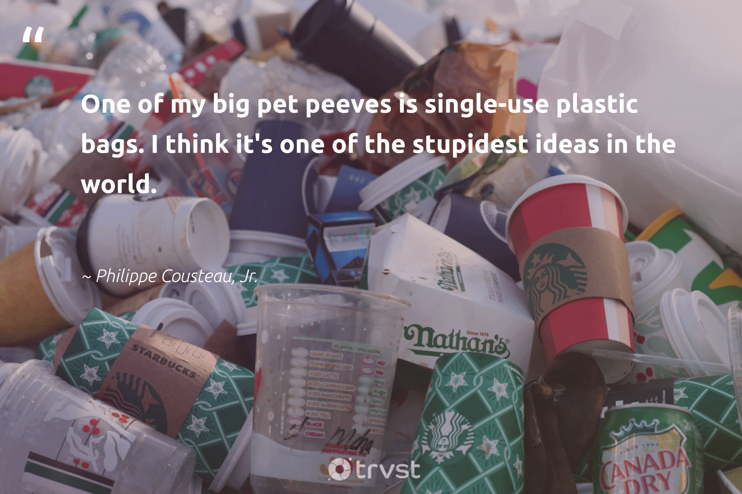 """""""One of my big pet peeves is single-use plastic bags. I think it's one of the stupidest ideas in the world.""""  - Philippe Cousteau, Jr. #trvst #quotes #plasticwaste #plastic #dotherightthing #noplanetb #beinspired #plasticsucks #changeahabit #ecoconscious #thinkgreen #microplastic"""