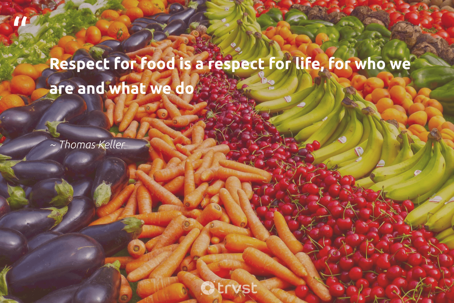 """""""Respect for food is a respect for life, for who we are and what we do""""  - Thomas Keller #trvst #quotes #food #foodforthepoor #wastenotwantnot #makeadifference #bethechange #hungry #environment #equalrights #dogood #hunger"""