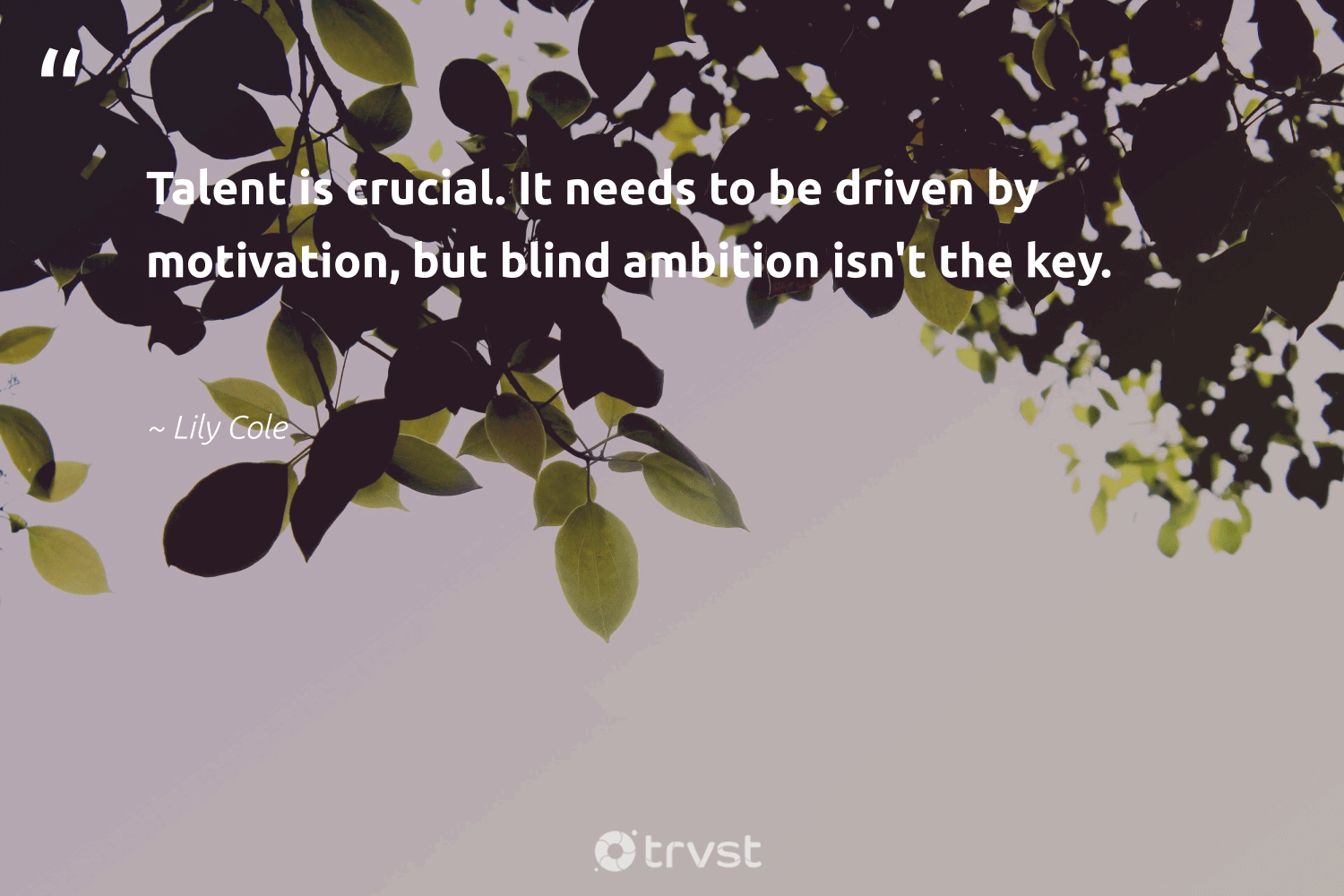 """""""Talent is crucial. It needs to be driven by motivation, but blind ambition isn't the key.""""  - Lily Cole #trvst #quotes #motivation #talent #mindful #believeinyourself #mindset #bethechange #creativemindset #youcandoit #togetherwecan #beinspired"""