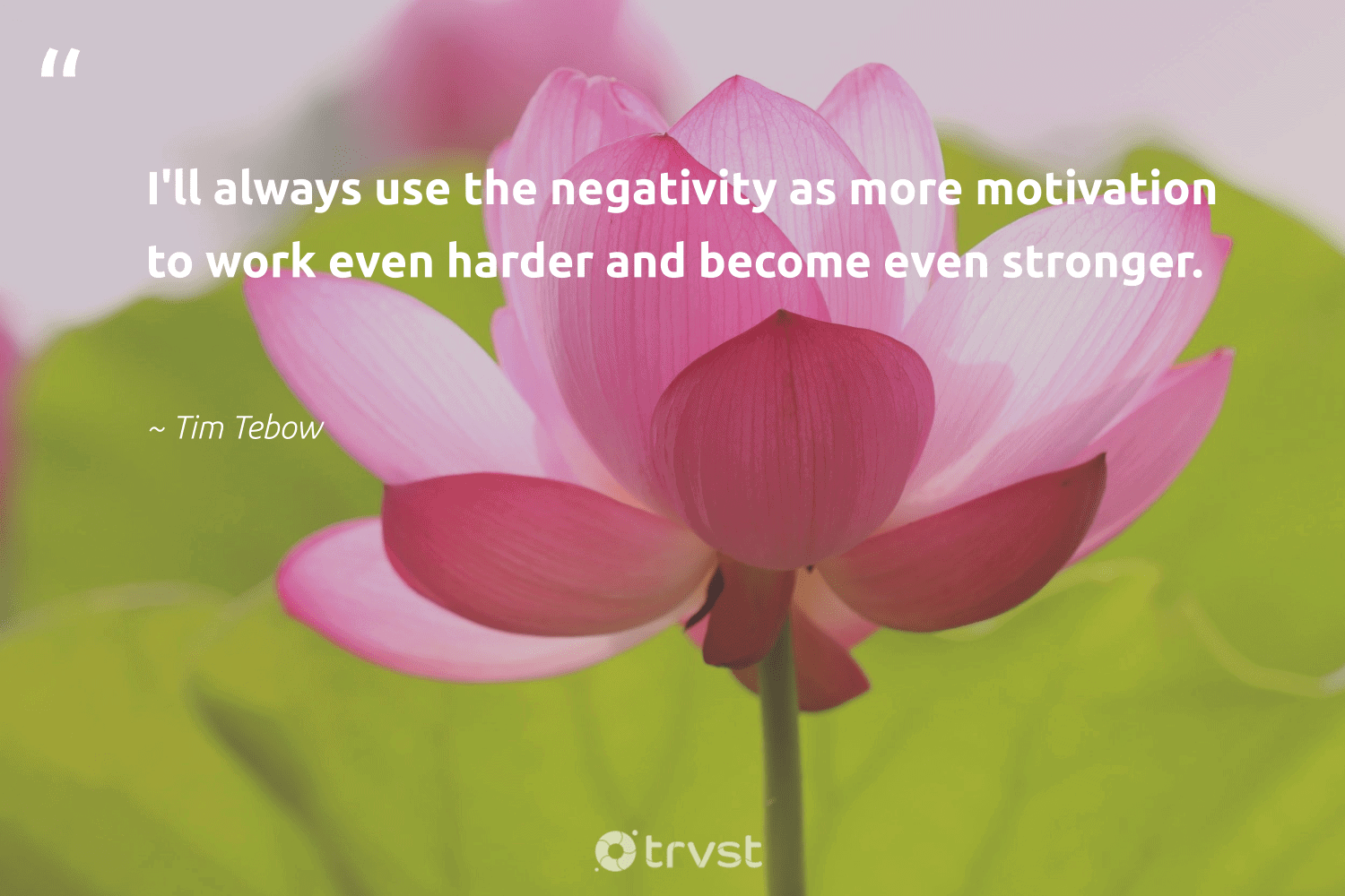"""""""I'll always use the negativity as more motivation to work even harder and become even stronger.""""  - Tim Tebow #trvst #quotes #motivation #meditation #youcandoit #togetherwecan #dosomething #mindful #createchange #health #socialimpact #meditate"""