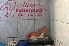 Futterplatz Katzenhoffnung Steiermark - das Paradies für HandiCATs / behinderte Katzen