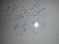 fishbone diagram on a drawing board