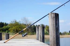 Ограничения рыболовства в подмосковье