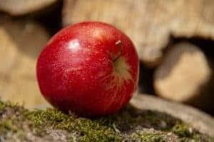 Äpfel als zuckerarmes Obst