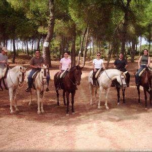 Paseo a caballo zona pinares Aznalcazar