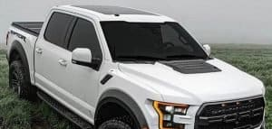 ford f150 white with tonneau and bed cover in grass