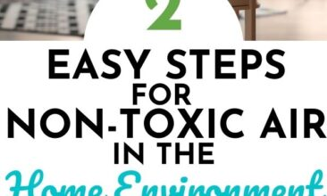 """Pinterest pin with two images. One image is of an essential oil diffuser. Second image is of house plant. Text overlay says, """"Tips for Non-Toxic Air in the Home Environment: 2 easy steps!"""""""
