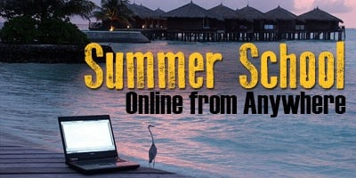 Online Summer School