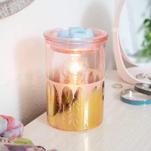 Fabulous Feathers Warmer – Spring/Summer 2021 Catalogue Scentsy