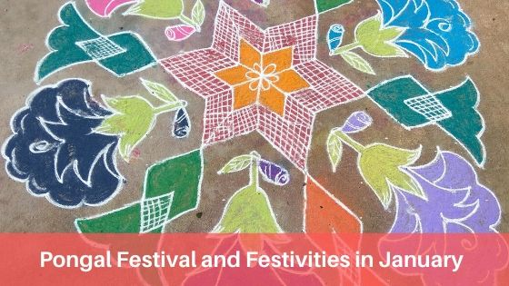 Pongal Festival and Festivities in January