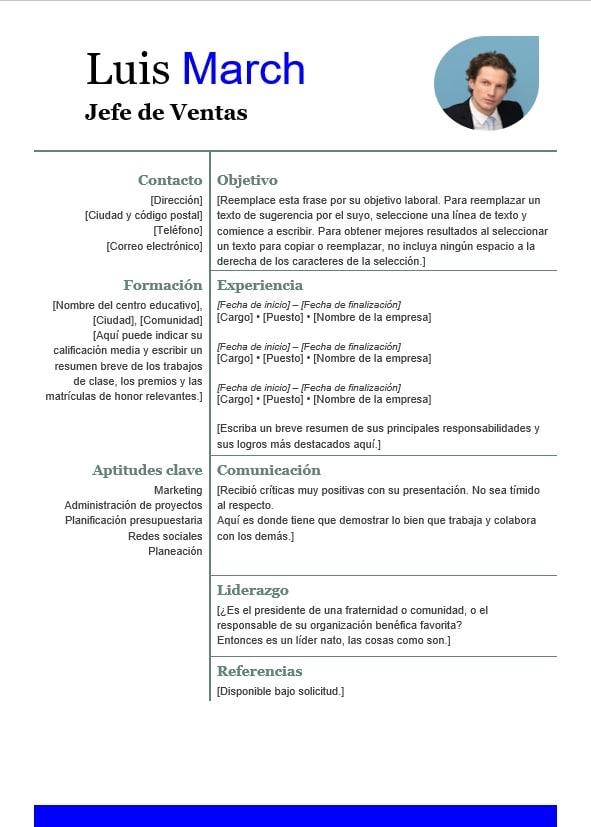 Curriculum cronologico ejemplo iCulum 1