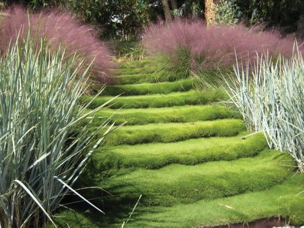 grass steps as the central element in a layered slope landscape