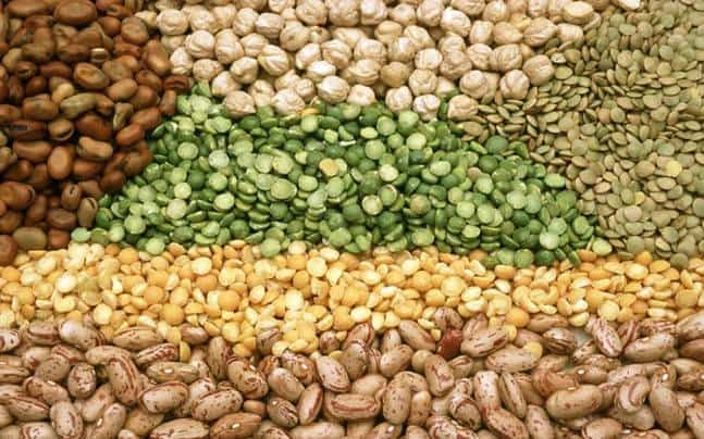 pulses-seeds