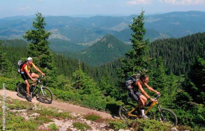 Paseo en bicicleta entre bosques