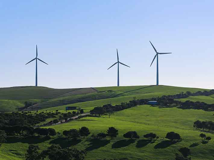 Renewable Energy Wind Turbines on Green Landscape