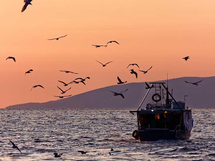 Fishing Trawler