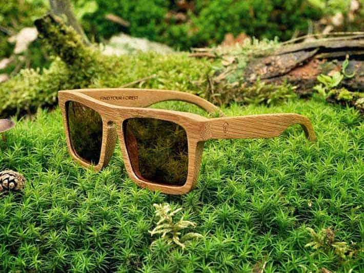 Robin Wood Sunglasses
