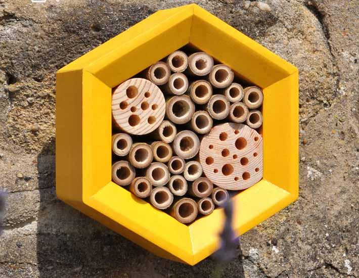 Bee Hotel eco friendly gift
