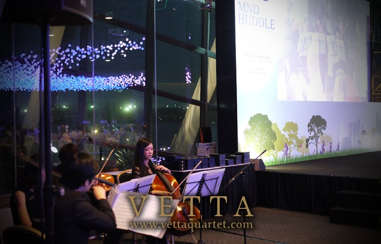 Gardens by the Bay performance quartet - String music