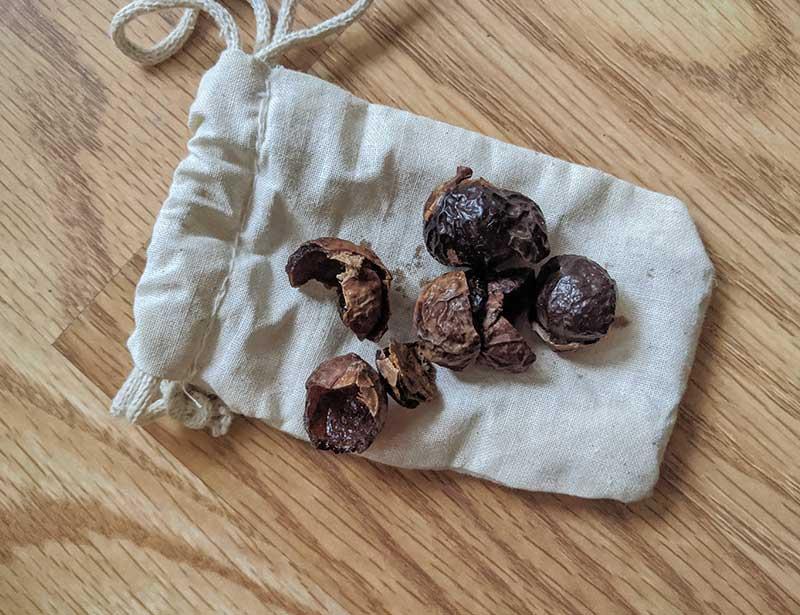 Soap nuts zero waste laundry swap