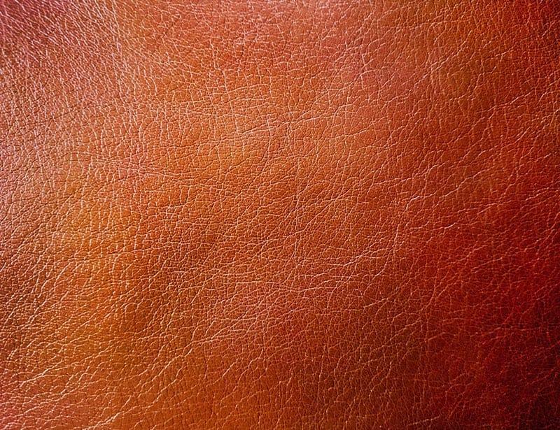Vegan leather texture