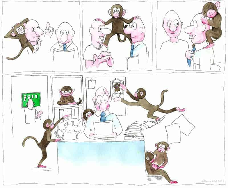 the monkey mind is activated in our brain's default mode network
