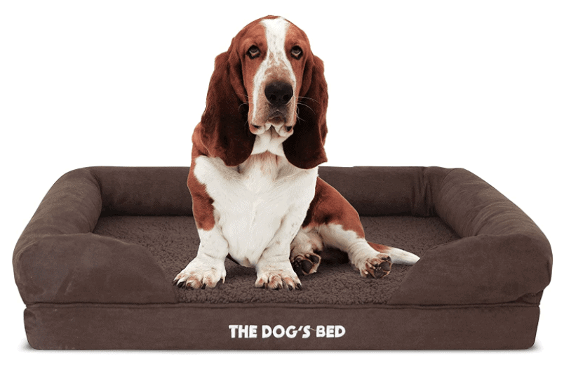 Our Favourite Dog Products