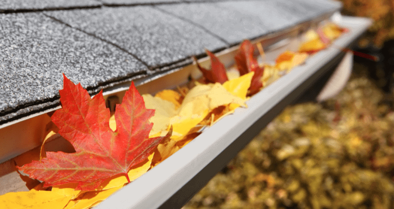7 Fall home maintenance tips for the Bay Area