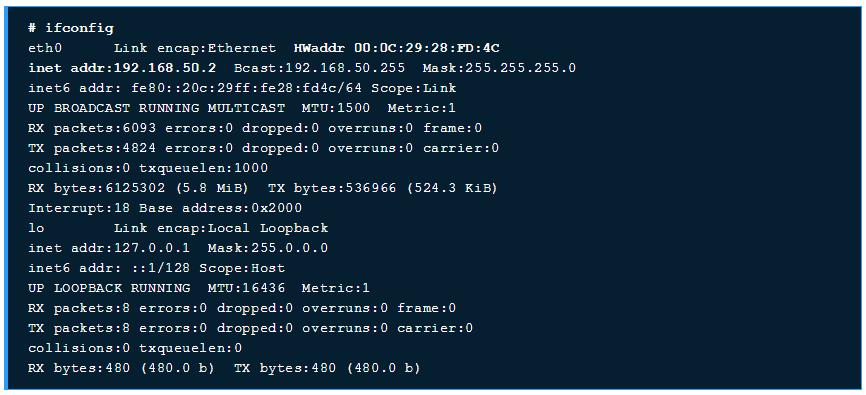 ifconfig Linux Hosting Guide