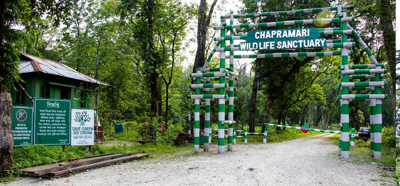 Chapramari Gateway dooars_info