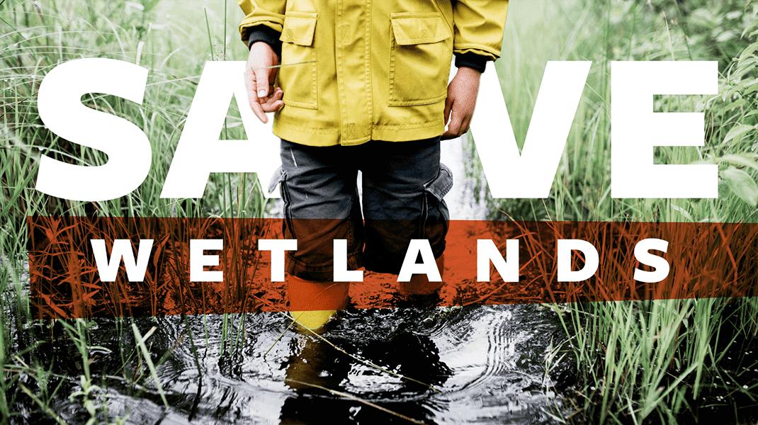 Save Wetlands - Digital Agency - Citizen Best
