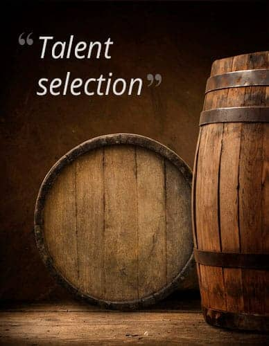 Talent selection