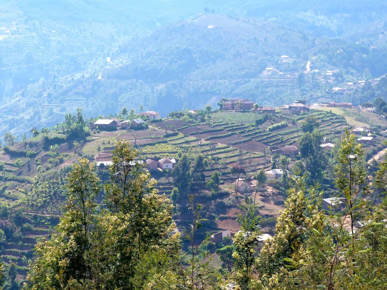 Usambara-Berge-1