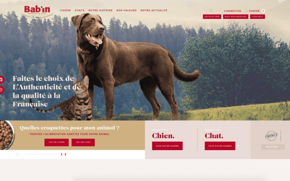 Capture d'écran du site internet Babin Nutrition