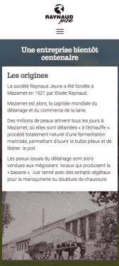 Capture d'écran du site internet mobile Raynaud Jeune