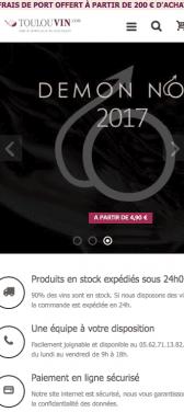 Capture d'écran du site internet mobile Toulouvin