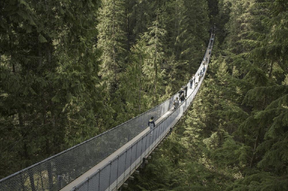 Capilano bridge vancouver