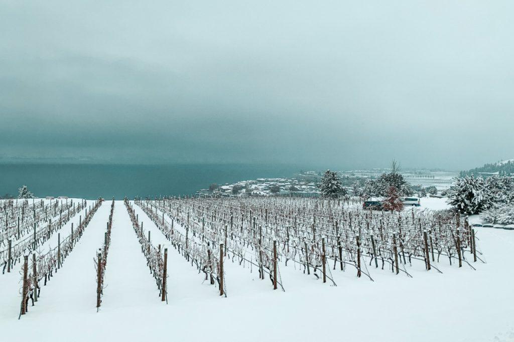 Kelowna, British Columbia Winery, Canada - ClairePins Travel