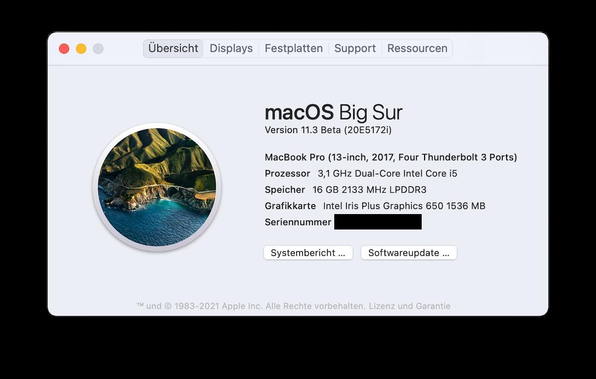 Soll ich meinen Mac auf macOS 11 Big Sur updaten? 3