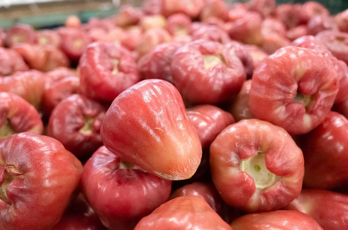 wax apples