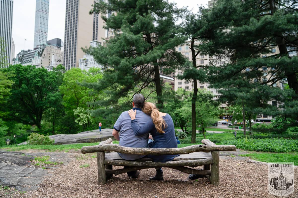 Photo 6 Central Park Proposal 2 | VladLeto