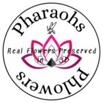 Pharaohs Phlowers