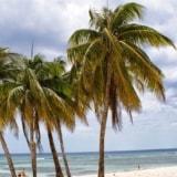 Kuba – Playa Larga & Playa Giron