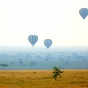 Serengeti Safari-17