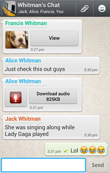 De interface van de Whatsapp berichtensoftware