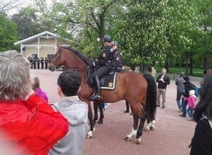 Mounted Police (1)