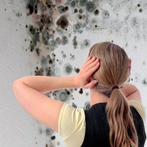 Schimmel an der Wand Schimmelbeseitigung Krankheiten 300x300 - Schimmel an der Wand – Ursachen, Vorbeugung und Schimmelbeseitigung