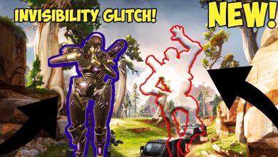 Photo of User Submission: Invisibility Glitch