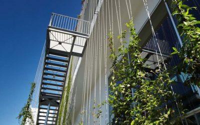 Grönskande väggar – Stücki Business Park
