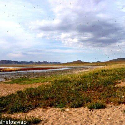 Mongolian Steppes Vlog